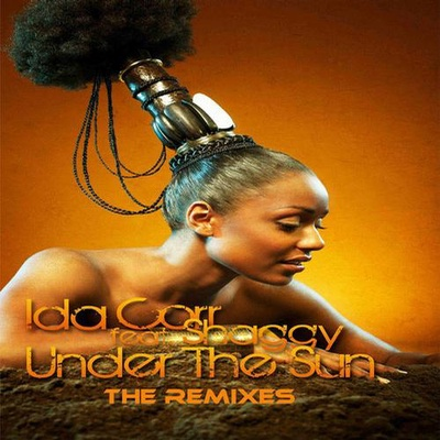 Under The Sun The Remixes