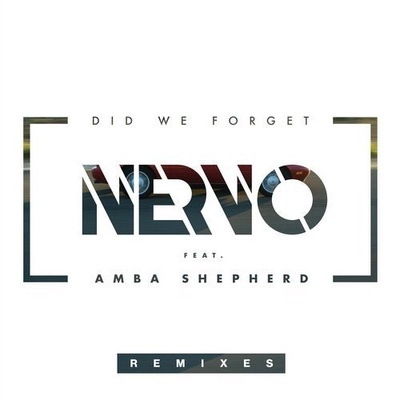 Did We Forget - Remixes